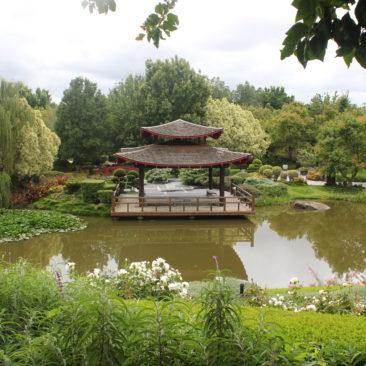 Hunter Valley Garden