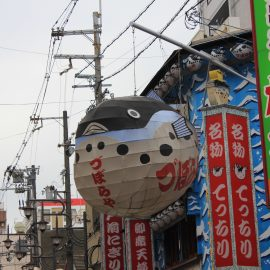 Le contraste nippon !