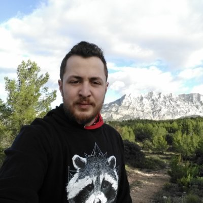 Sweat capuche / Hoodie Raton Laveur/Racoon – Trash Panda